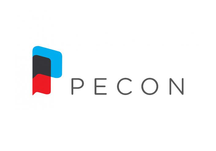 Pecon Consulting Logo Design